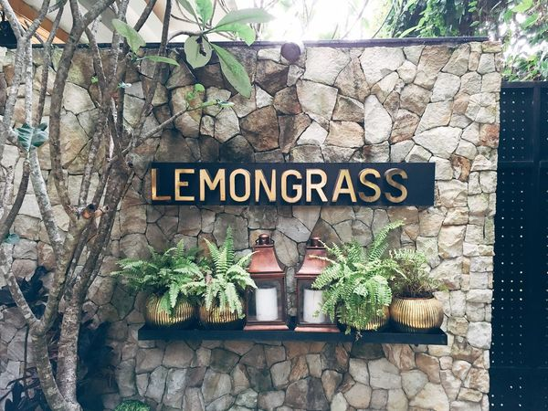 Hello Check This Out Hanging Out Relaxing Enjoying Life Lemongrass Entrance