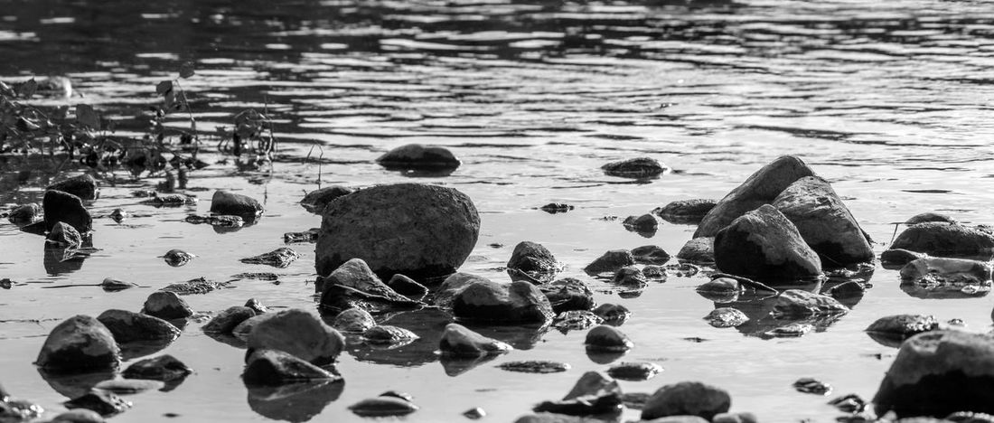 Rocks on a river shore. London, Ontario. Black & White Calm Panorama Panoramic Ripples Tranquil Tranquility Abstract Beach Black And White Canon Day Nature Outdoors Pebble Beach Rippled Ripples In The Water River Serene Shore Tranquil Scene Water