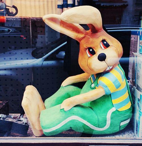 Rabbit Bun Bunny  Hase Tavşan Cute Pretty Love Animal Ostern 2015