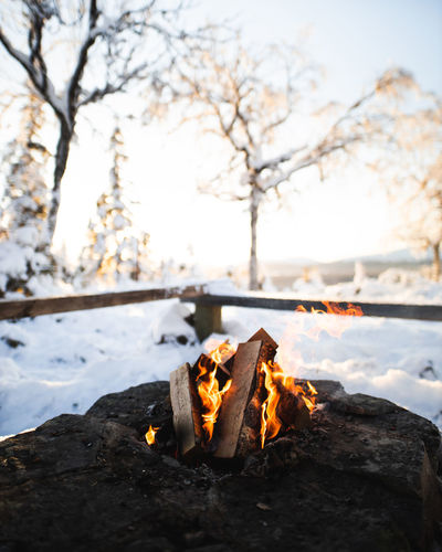 Close-up of bonfire in winter