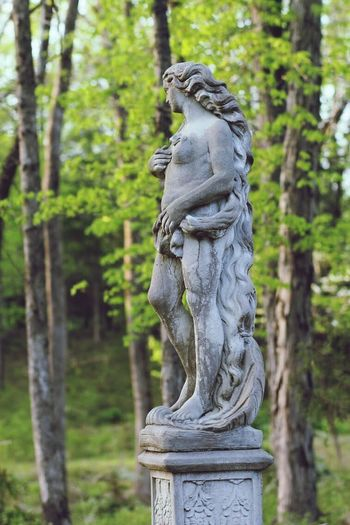Statue against trees in forest