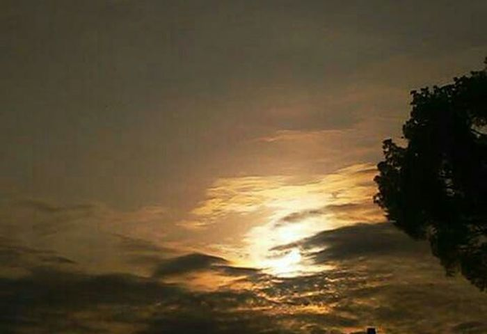 Good Morning friends in the World 🌍🌏🌎 Have a nice dai 💯💯💯 Sunrise Tree Multi Colored Sky Cloud - Sky Thunderstorm Atmospheric Mood Meteorology Dramatic Sky