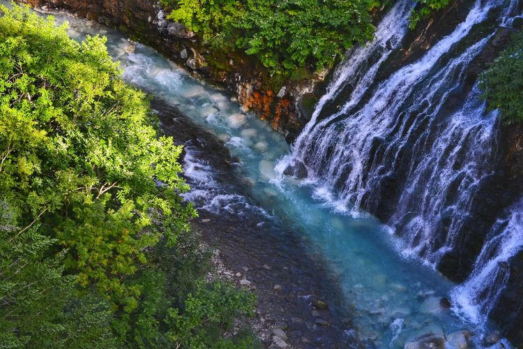 High angle view of waterfall in forest