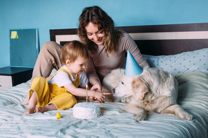 Labrador golden retriever with little child celebrate birthday with cake