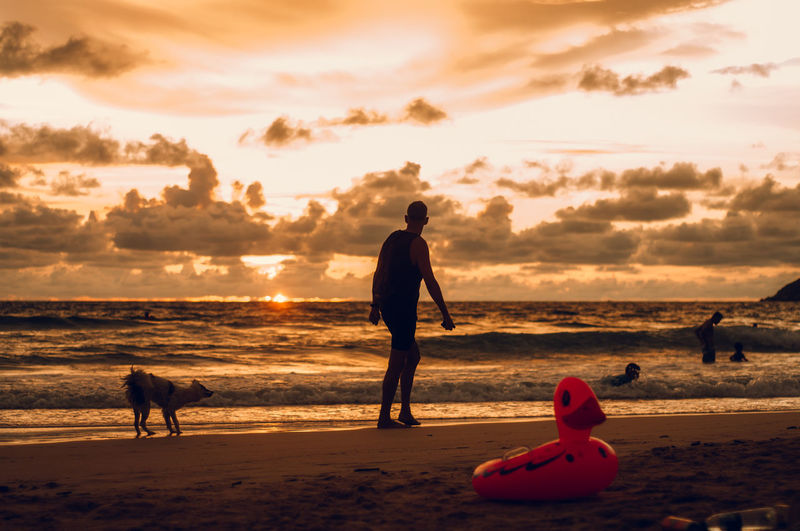 Our life is what our thoughts make it. Sunset Sky Land Beach Water Sea Orange Color Dog Cloud - Sky