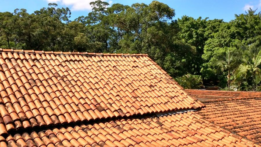 Tree Roof Architecture Abstract Rythm Sunlight Outdoors No People Green Color Sky Nature Day Roof Summer Lights Lifestyle Cityscape Sao Paulo - Brazil Lifestyles Landscape Freedom Blue Sky Architecture Walking Around Uniqueness