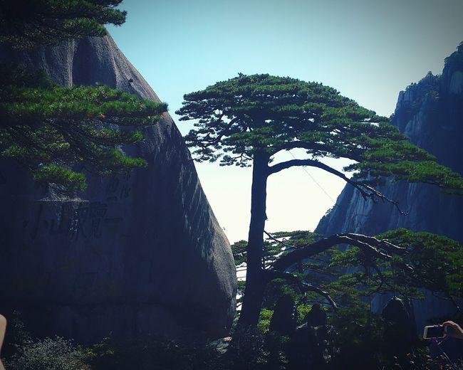 黄山迎客松🍃☀ Hanging Out Taking Photos Stones Mountains And Sky China Style