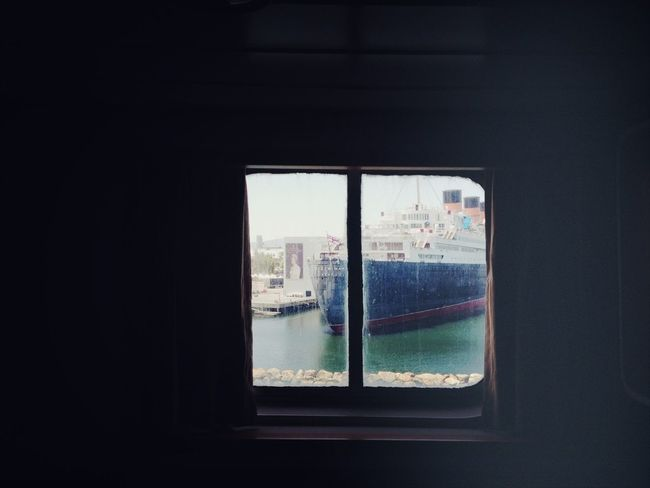 Queen Mary Enjoying The View From My Window Window