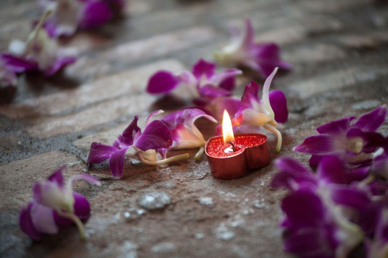 Close-Up Of Burning Tea Light Amidst Flowers