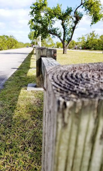 fence, palisad, village Grass Gardens Garden Lawn Road Marking Village House Village House Green Color Village View Village Paling #Nature  Tree Sky Grass Close-up Farmland Growing Fence Chainlink Safety Security Cultivated Land Lighthouse Lifeguard Hut Agricultural Field