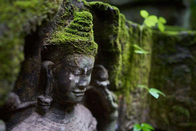 Close-Up Of Mossy Buddha Statue At Temple