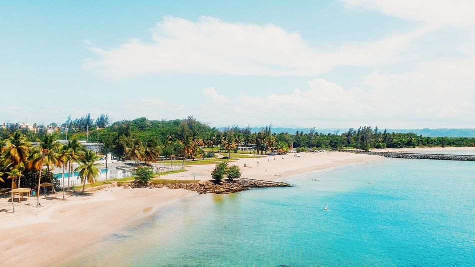 Scenics Sky Cloud - Sky Beauty In Nature Beach Sand Nature Tree Tranquil Scene Sea Tranquility Water Palm Tree Vacations Day Landscape No People Travel Destinations Outdoors Architecture High Angle View Drone Photography Aerial Photography Aerial View Puerto Rico