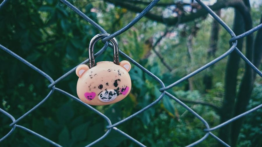 Close-up of padlock hanging on chainlink fence