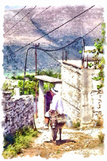 Woman riding a donkey Albania Woman Animal Themes Architecture Art Day Digital Art Digital Painting Domestic Animals Donkey Full Length Mammal Nature One Animal One Person Outdoors People Pets Real People Riding Street Tree Watercolor Watercolor Painting