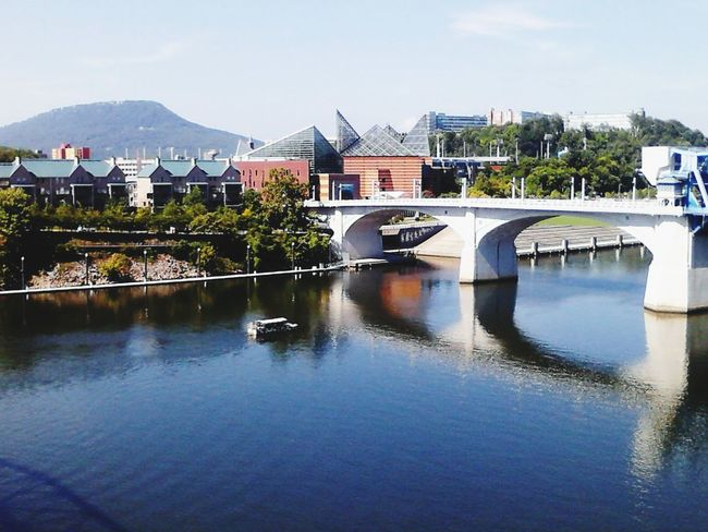 Lookout Mountain Tennessee River  Bridges Chattanooga Tennessee Aquarium Landscapes With WhiteWall