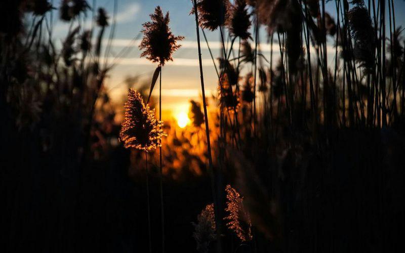 ... Relaxing Nature Biutiful Sunset