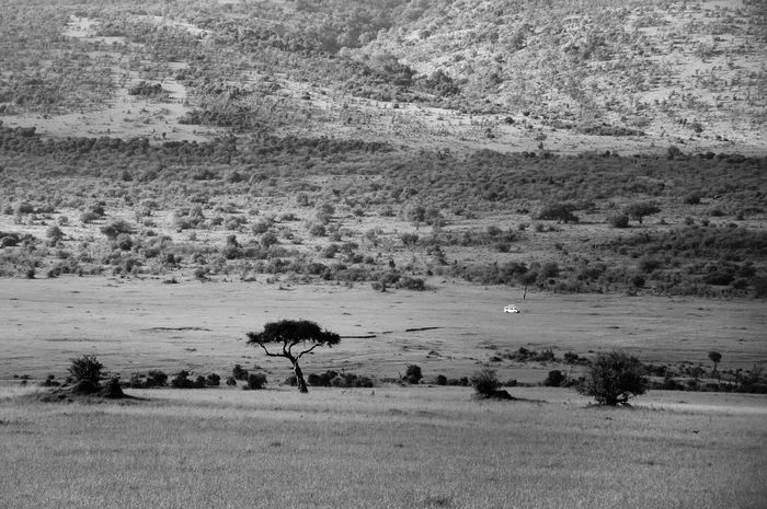 Beautiful serene landscape of famous Masai Mara National Reserve in Kenya, Africa. Beauty In Nature Black And White Black And White Photography Day EyeEm EyeEm Best Shots EyeEm Gallery EyeEm Nature Lover EyeEm Photo Of The Day EyeEmBestPics EyeEmNewHere Hills And Valleys Kenya Landscape Landscape Photography Masaai Masaai Mara National Reserve Nature No People Outdoors Photography Tranquil Scene Tranquility Trip Lost In The Landscape