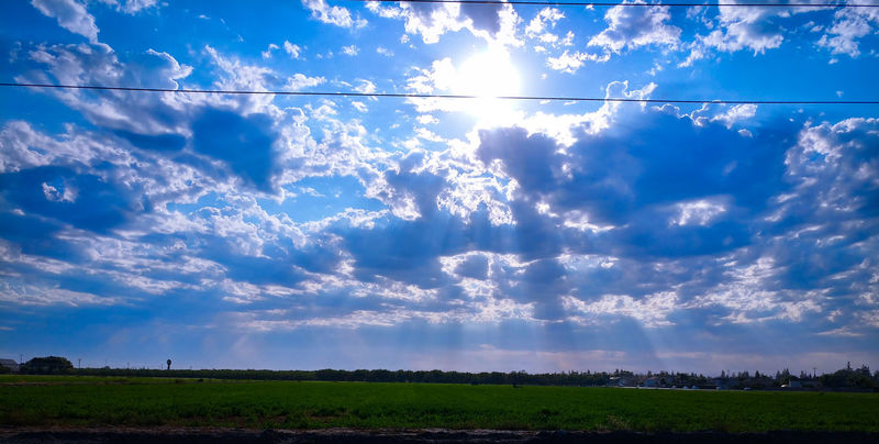 Agriculture Dramatic Sky Cloud - Sky Field Crop  Sky Nature Rural Scene Tranquil Scene Landscape Day Tranquility No People Summer Outdoors Freshness Beauty In Nature Scenics Food