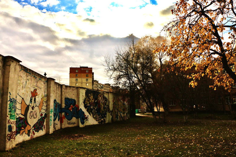 Graffiti on wall by trees on field against sky