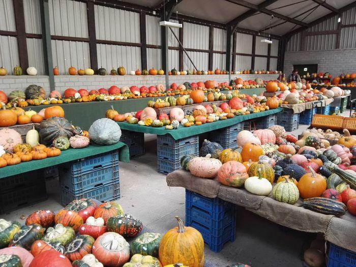 Pumpkin market Pumpkin Season