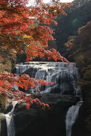 Autumn Leaves Hukuroda-waterfall Waterfall