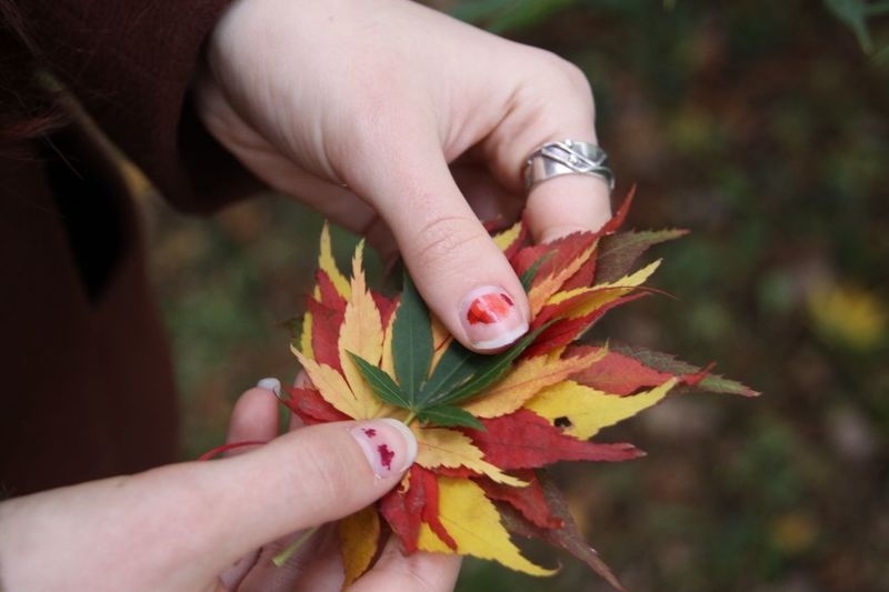 autumn Human Hand Leaf Autumn Real People Human Body Part One Person Holding Human Finger Focus On Foreground Outdoors Change Close-up Lifestyles Day Nature Leisure Activity Beauty In Nature Maple Leaf Women Flower EyeEm Ready   AI Now EyeEmNewHere