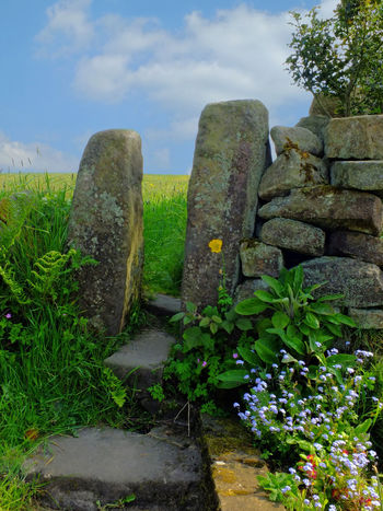 stone gate surrounded by spring flowers in a dry stone wall Dry Stone Wall Gate Architecture Beauty In Nature Built Structure Cloud - Sky Day Flowers Grass Green Color Growth Nature No People Outdoors Plant Rock Sky Spring Stile Stone Stone - Object Stone Material Stone Wall Tranquility Wall