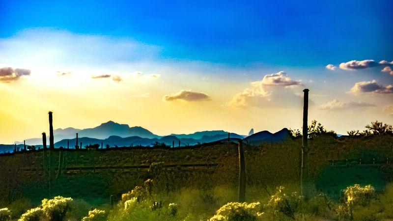 Tontonationalforrest ...2.8million acres of Gorgeous Arizona Desert Arizona Landscape Desert Landscape