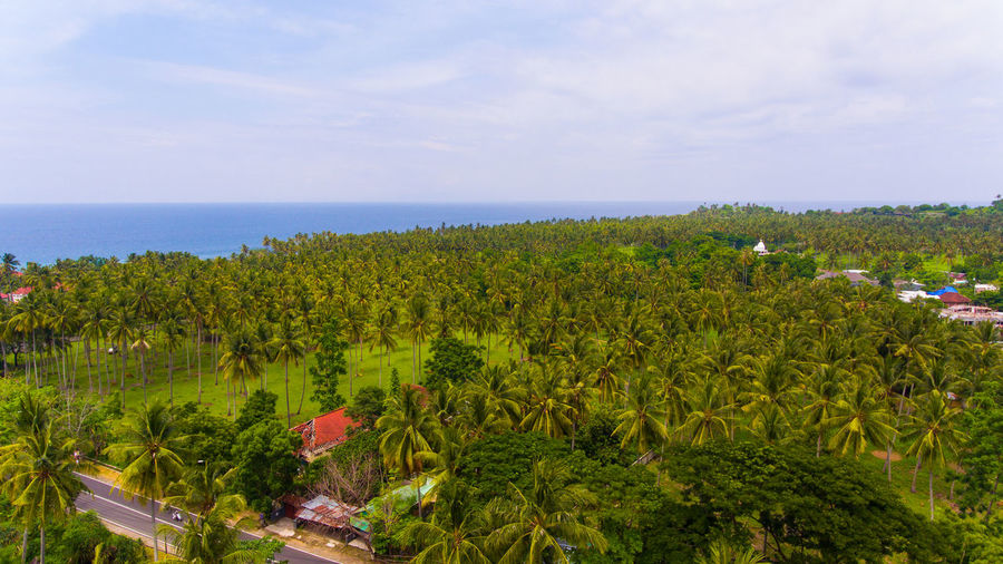 Mainland and oceans from heights Plant Sky Water Nature Scenics - Nature Beauty In Nature Horizon Land Sea Growth Tranquility No People Horizon Over Water Tree Tranquil Scene Green Color Day Landscape Cloud - Sky Outdoors Lombok Lombok-Indonesia INDONESIA Tropical Climate Tropical