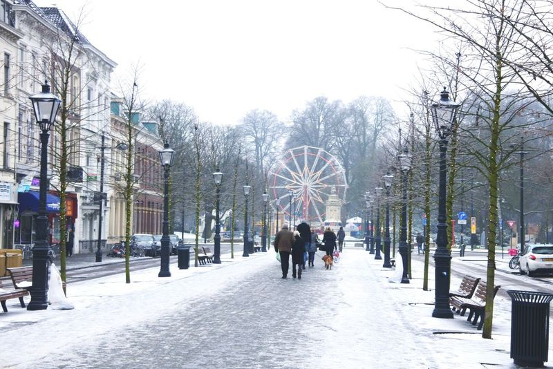 Winter Wonderland Willemstraat Breda, Netherlands EyeEmNewHere Nikkon