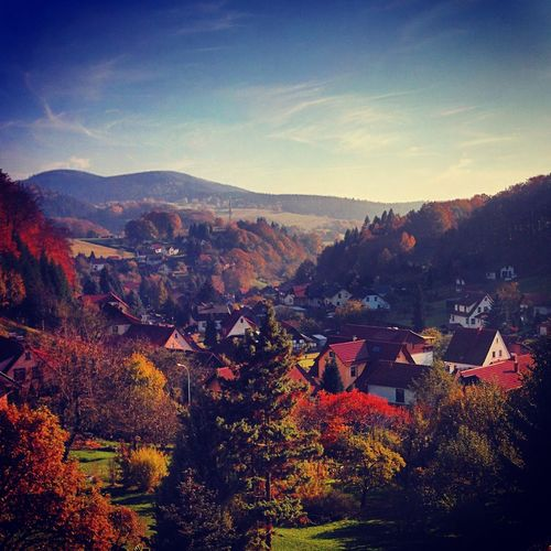 Fall Fall Colors Autumn Landscape