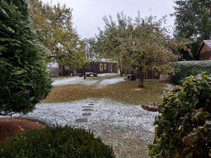 Langsam wird das mit dem Wetter 😁 Garden At Home Herbst Herbststimmung Snow Snow ❄ First Snow