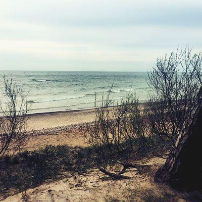 Balticsea