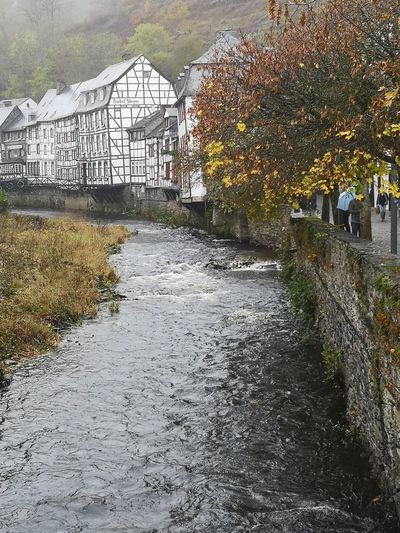 Scenic view of river by houses during autumn