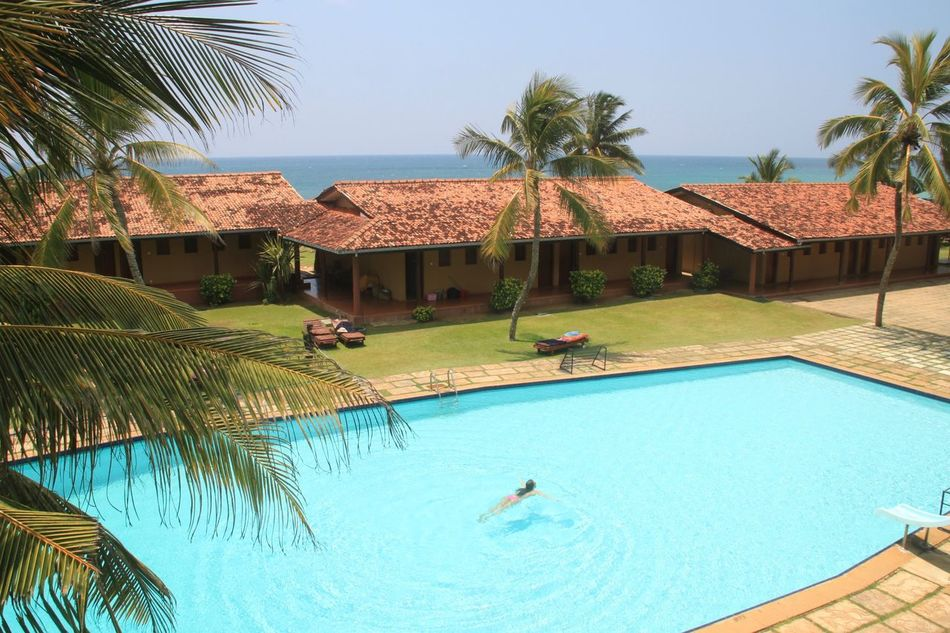 Beach Beauty In Nature Built Structure Day Outdoors Palm Tree Pool Time Poolside Relaxation Sri Lanka Summer Swimming Swimming Pool Tourist Resort Travel Destinations Tropical Tropical Climate Tropical Paradise Vacations Water Flying High Live For The Story