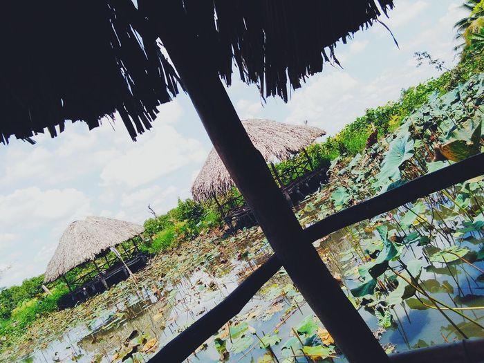 Việt Nam ! 😘😘😘