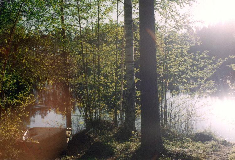 Taken on film in 2004. Jyväskylä, Finland Nature The Explorer - 2014 EyeEm Awards The Environmentalist – 2014 EyeEm Awards