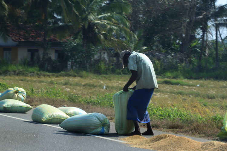 Full length of farmer with sacks by field on road