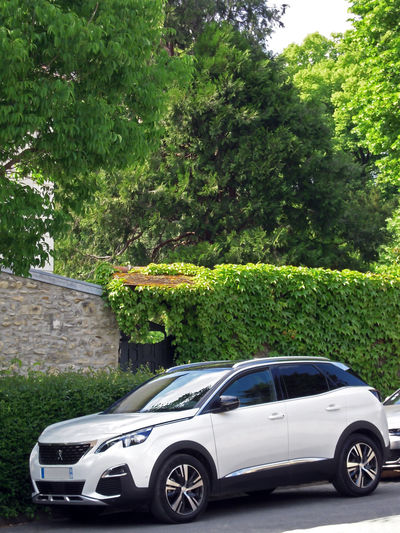 Full lenght frenchy car and style Peugeot One Car White Twice Colors Stationary Windscreen Reflection Land Vehicle Ivy Wall Plant Ivy Wall Background Car Photography In France