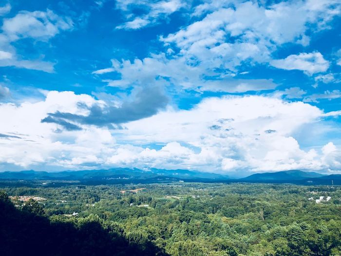 Blue Ridge Mountains Vista Blue Ridge Mountains In North Carolina Cloud - Sky Beauty In Nature Sky Scenics - Nature Plant Tranquil Scene Tranquility Tree Nature Growth Day Landscape Land Idyllic Environment No People Green Color Blue Non-urban Scene Outdoors