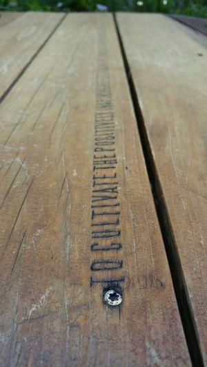 Parklet Carving Wooden