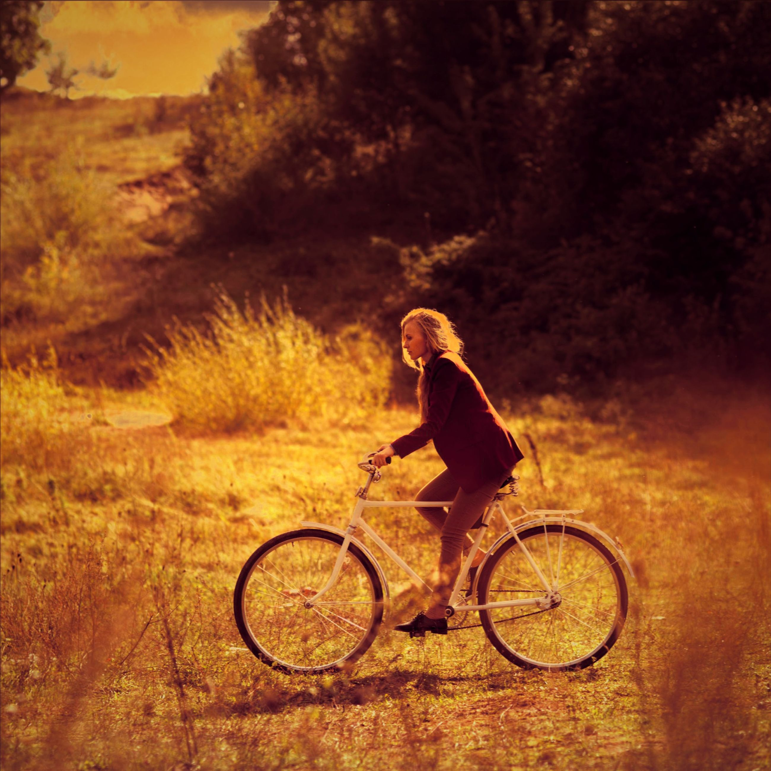 bicycle, full length, lifestyles, leisure activity, riding, mode of transport, transportation, land vehicle, casual clothing, tree, side view, young adult, outdoors, nature, men, person, cycling, travel