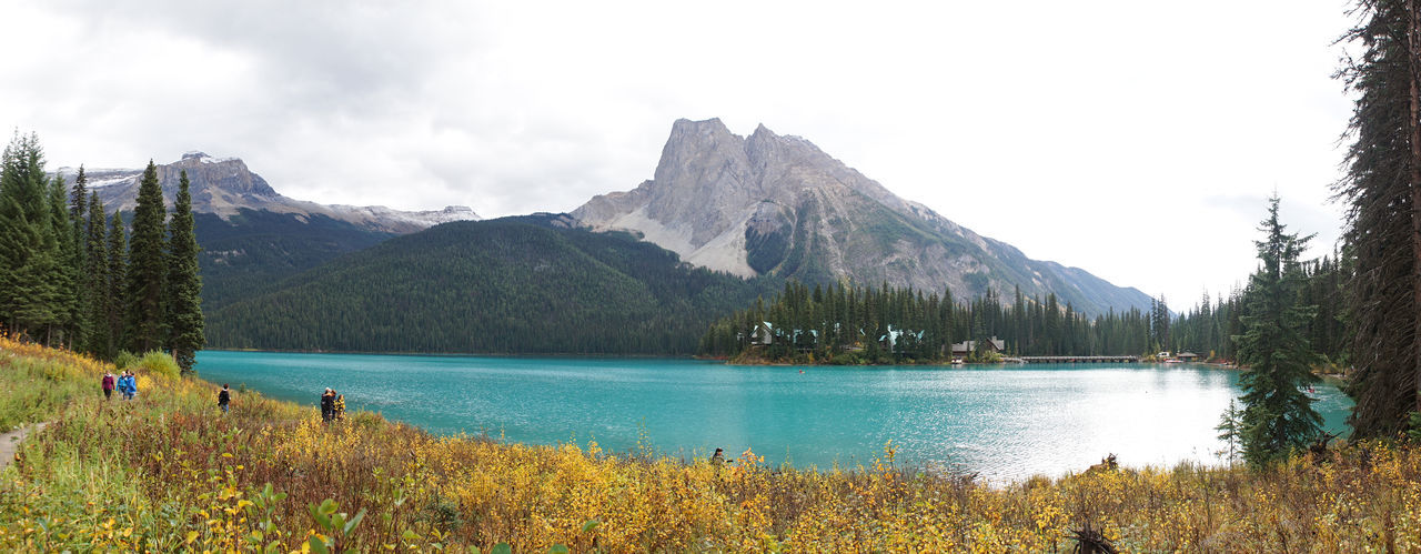 Lake and Mountain Landscapes at Emerald Lake in Yoho National Park, British Columbia, Canada. Emerald Lake Lake View Lake Mountain Scenics - Nature Beauty In Nature Sky Tree Tranquil Scene Mountain Range Tranquility Plant Nature