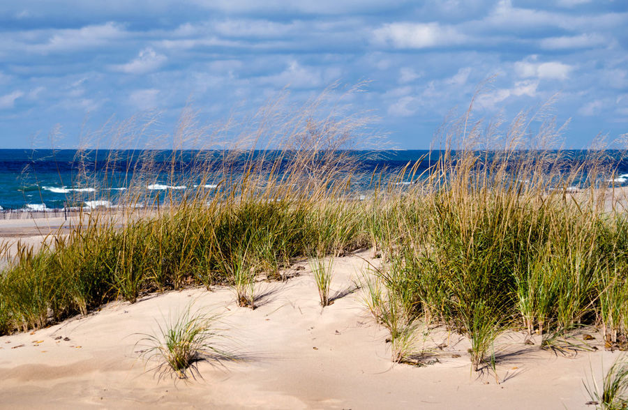 Lake Michigan dunes landscape Beach Water Sand Sky Land Plant Cloud - Sky Grass Nature Marram Grass Scenics - Nature Beauty In Nature No People Tranquility Horizon Day Tranquil Scene Horizon Over Water Outdoors Great Lakes Lake Michigan Michigan USA Dunes Scenery Beach Grass
