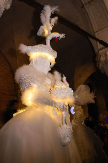 Carnival in Venice Carnival In Venice Lights Night Lights Nightphotography Venice, Italy Animal Themes Bird Celebration Close-up Costume Feather  Mask Night