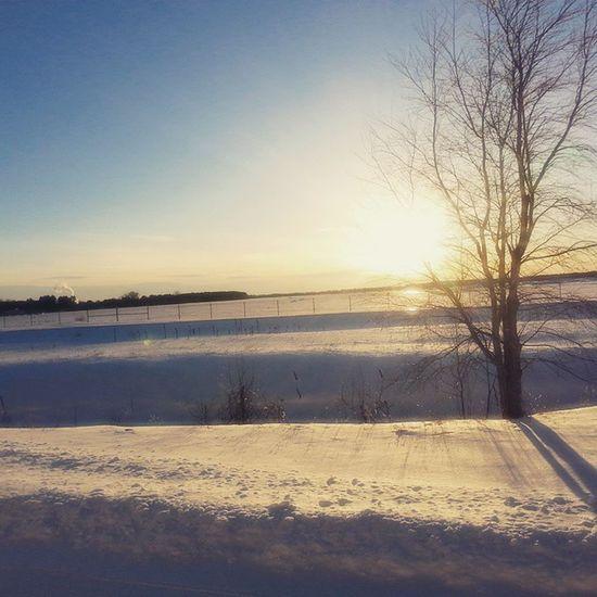 Beautiful Sunset Tree Sun Snow Field LovinLife