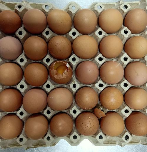 One egg stall