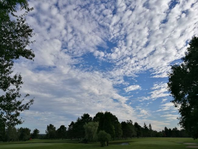 Tree Cloud - Sky Sky Day Nature No People Landscape Outdoors Beauty In Nature Grass The Week On EyeEm