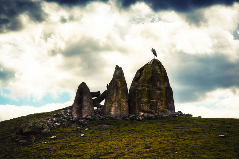 Rocks Alone Animals In The Wild Bird Photography Dramatic Sky Grass Light Standing Animal Animal Themes Animal Wildlife Animals Animals In The Wild Bird Birds Cliff Cloud - Sky Dramatic Meadow Mood Nature Rock Rock - Object Rock Formation Sky Solid EyeEmNewHere