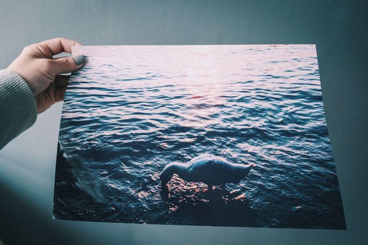 Person holding umbrella by sea